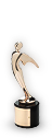 Image of  Telly Award Bronze